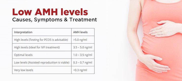 Low AMH levels – Causes, Symptoms & Treatment